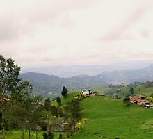 Ecuador Country Panorama by Al Bourassa