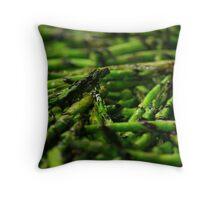 Grilled Asparagus w/ Balsamic Glaze Throw Pillow
