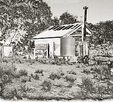 Another Shack on the Donnelly by Adrian Kent