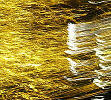 Gold and Silver Threads by Wendi Donaldson
