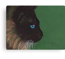 Blue Eyed Canvas Print