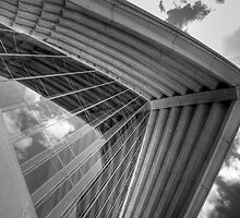 Self Reflections - Reflections of the sky on the Opera House glass - Black & White by dahon