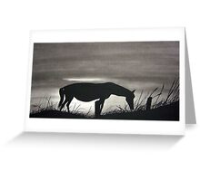 Morning Graze Greeting Card