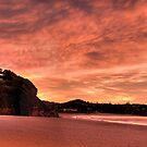 Flamingo - Warriewood & Mona Vale Beaches , Sydney - The HDR Experience by Philip Johnson