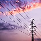 electricity of evening by waitin' for rain
