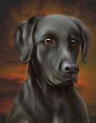 Black Lab  by Elaine  Manley