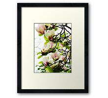 Beautiful Bower! Framed Print
