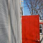 Barn Door by Schutte14