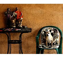 Portrait of Manny The Dog - Mesilla, NMex Photographic Print