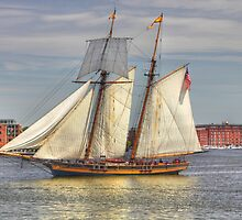 Baltimore Harbor Tall Ship by tom fijalkovic