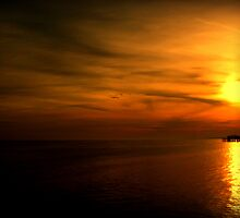 Sunset Over Brighton's West Pier - Landscape by vistavie79