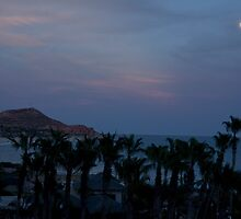 Moonlight On The Sea Of Cortez by phil decocco