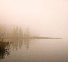 Silence by Gisele Bedard
