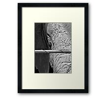 """Window And The Watcher"" Framed Print"