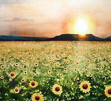 Sunflower Splatters by Arlene Kline