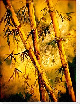 Tropics.. Heat and Old Bamboo by © Janis Zroback