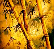 Tropics.. Heat and Old Bamboo by ©Janis Zroback