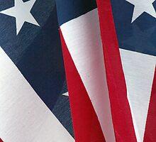 American Flag by Carla Van Wagoner