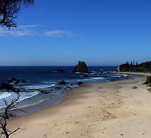 GlassHouse Rocks Beach by Evita
