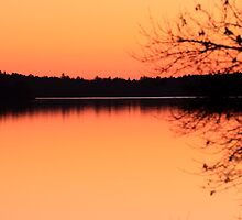 Peace at Sunset  by Kate Purdy