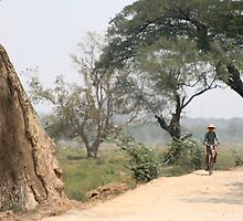 Burmese Bicycler by Colinizing  Photography with Colin Boyd Shafer