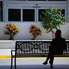 Waiting  by Shelby  Stalnaker Bortone