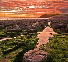 Fire Sky by Mark Robson