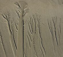 Sand Forest - Tidal Art by iamelmana