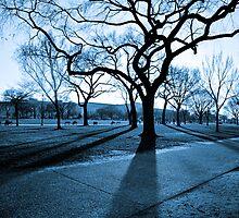 Winter Blues by AdkinsExposures