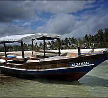 ZANZIBAR - Ship at Kiwengwa beach by Daniela Cifarelli