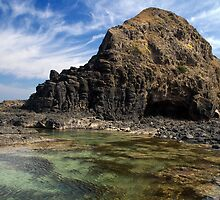 Pinnacle Rock Pool by Vickie Burt