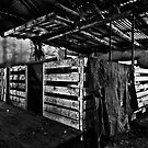 Old Sheep Pen b&amp;w by Craig Hender