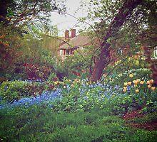 English Garden! by Gursimran Sibia