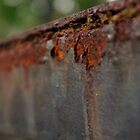 Riding a Rusty Rail by Martha Andreatos