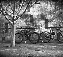 Shadowy Transgressions by Tim  Geraghty-Groves