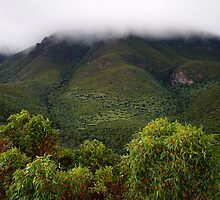 stirling ranges - western australia by col hellmuth