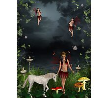 Welcome to Fairyland Photographic Print