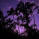Violet Palms by Sean Jansen