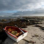 Red boat at Kommetjie Cape Town by Neil  Bradfield