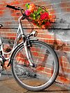 Bike and Flowers by Colin J Williams Photography