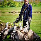 Feeding the Vultures by Simon Duckworth