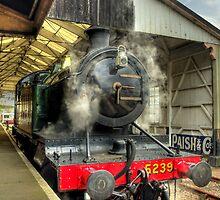 5239 GOLIATH by phil hemsley