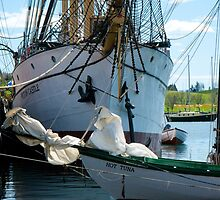 The Barque Picton Castle by Roxane Bay