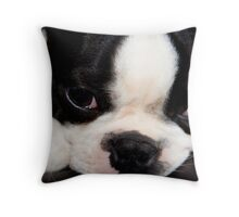 Sleepy Throw Pillow
