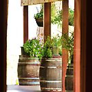 Decorative wine barrels through porch window by shilohrachelle