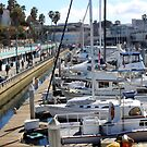 Redondo Beach Harbor 1130 by eruthart