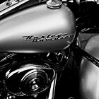 Harley Davidson by Heike Nagel