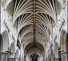 The Cathedral Church Of St Peter In Exeter - # 1 by Jazzdenski