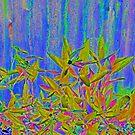 The Solarized Garden by Jen Waltmon