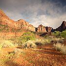 Zion National Park, Utah by Hugh Chaffey-Millar
